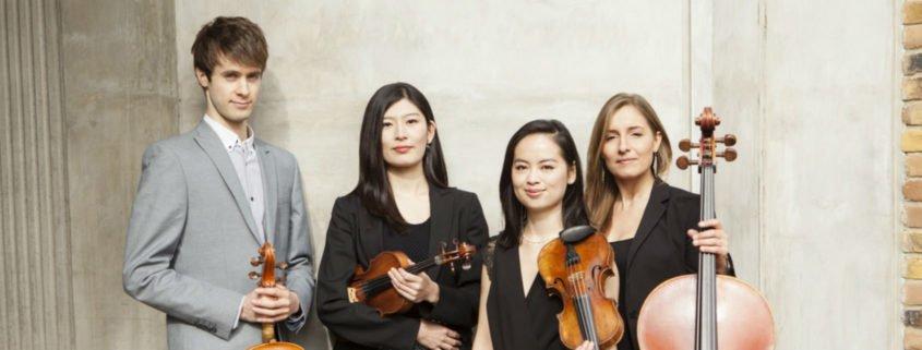 Dulcinea String Quartet